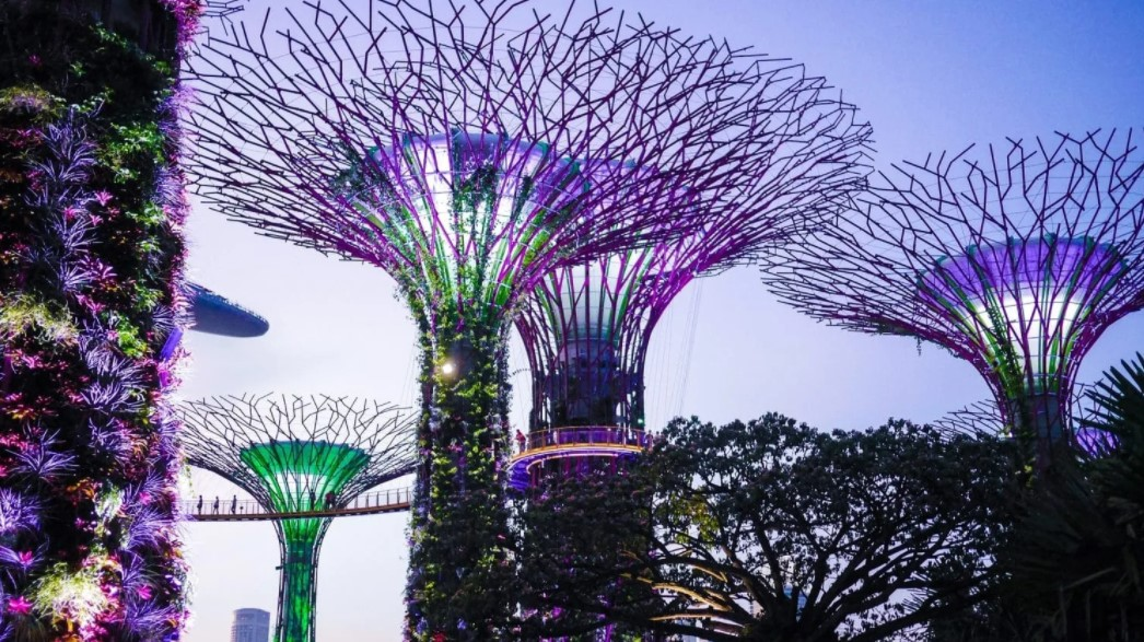 Looking for a Photo Spot in Garden By The Bay? Check This Recommendation